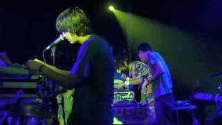 animal collective daily routine