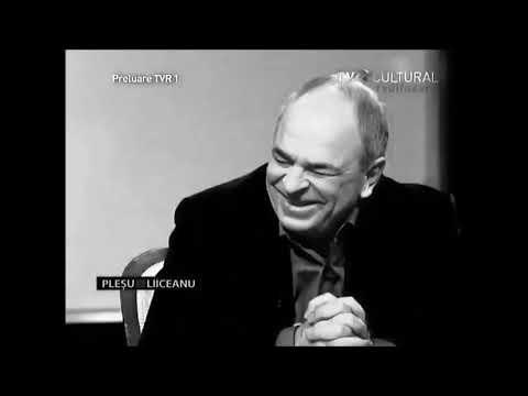 Curiozitate: părerea lui Andrei Pleşu despre subingineri coincide cu părerea subinginerilor despre Andrei Pleşu.