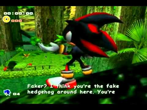 You're Not Even Good Enough to Be My Fake - Sonic Quotes