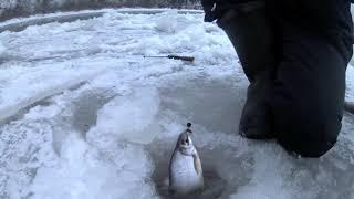 Рыбалка на реке уфа в башкирии