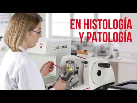 Portafolio de patología e histología SANITAS SAS