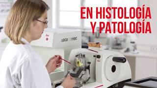 Conozca nuestro portafolio de Histología y Patología