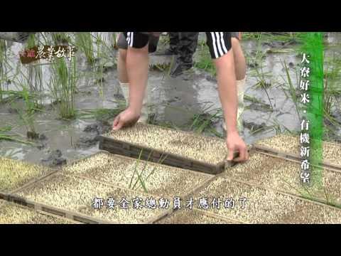 高雄故事館-稻米