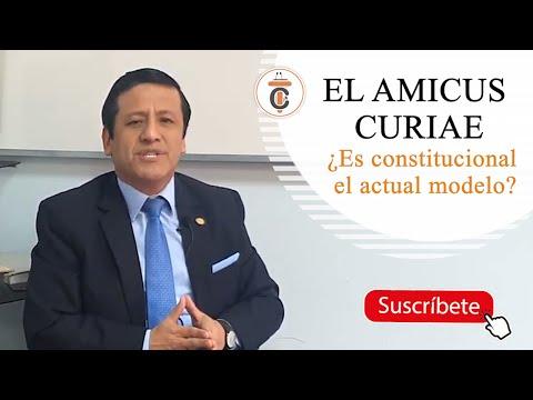 EL AMICUS CURIAE ¿Es Constitucional el actual modelo? - TC176
