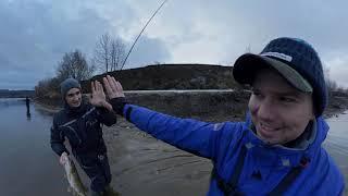 Ловля хищника на москва реке летом