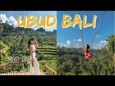 Where To Go In UBUD, BALI | Monkey Forest, Bali Swing, Rice Terraces, Waterfalls