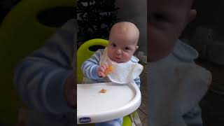 Cute Baby Kaeden Eats Finger Food For The First Time!