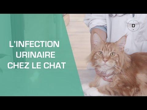 Metode parazitare
