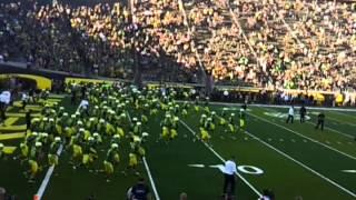 A Swarm of Yellow - Oregon Ducks