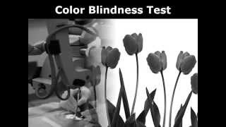 Color Blind Test RGB+CM Pattern for Achromatopsia
