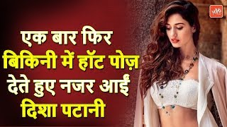 Disha Patani Once Again Looking At Bold Pose In Bikini Latest Updates 2019 | YOYO TV Hindi