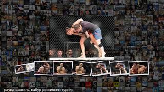 Голландец Оверим нокаутировал россиянина Олейника. Интриги и разочарования UFC в России