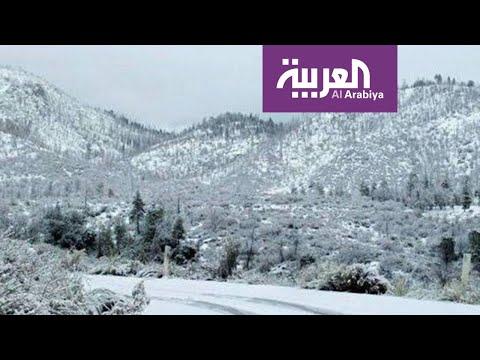 العرب اليوم - شاهد: موجة برد غير مسبوقة تضرب بعض الدول العربية