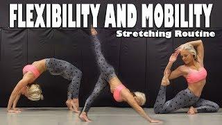 My Stretching Routine | Flexibility & Mobility