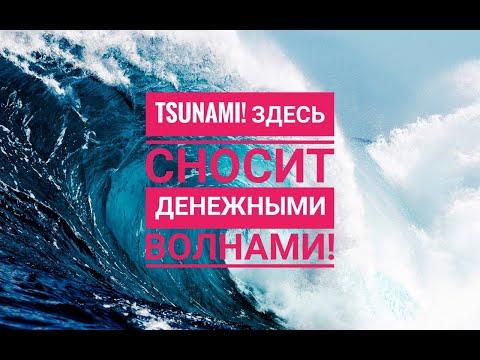 Проект #ЦунамиМани / Мой заработок 8 635 руб за пол дня ! СУПЕР