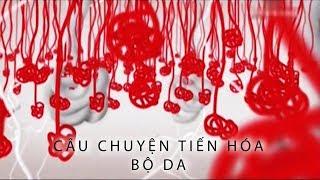 cau-chuyen-tien-hoa-bo-da-phim-tai-lieu-khoa-hoc-thuyet-minh
