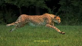 Jaydon Lewis - Runaway (feat. ChianoSky) [Lyric Video]