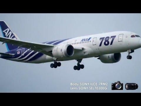 4K動画で見る『SEL70300G』の連写撮影
