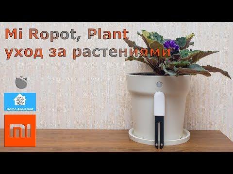 Xiaomi ropot, mi plant - умный горшок и датчик для растений