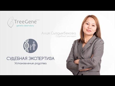 Установление отцовства с заключением эксперта а Казахстане