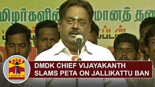 DMDK Chief Vijayakanth Slams PETA Over Jallikattu Ban  Thanthi TV