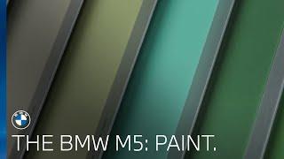 The BMW M5   Paint