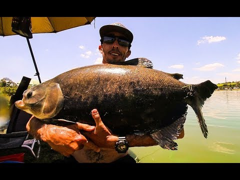Pesqueiro Italiano - Amental Fishing - Ultralight
