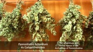 preview picture of video 'Pannonhalmi Arborétum és Gyógynövényház'