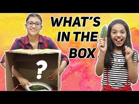 Download What S In The Box Challenge Samreen Ali | Dangdut Mania