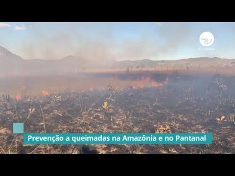 Frente discute prevenção a queimadas na Amazônia e no Pantanal - 16/09/20