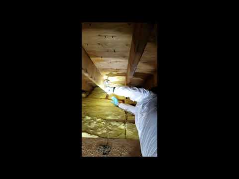 This homeowner in Manasquan, NJ had mold growth in his attic due to high humidity levels.The homeowner recently installed an attic fan, to control the humidity levels in the attic, so it was up to us to remove the mold.