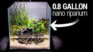 Making a 0.8 Gallon NANO RIPARIUM