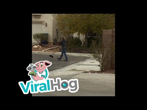 Neighbor Erupts in Racist Rant Over Leaves || ViralHog