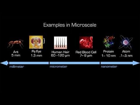 Construyendo nanobots inspirados por la biología