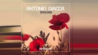 Antonio Giacca - Birdland (Original Mix)