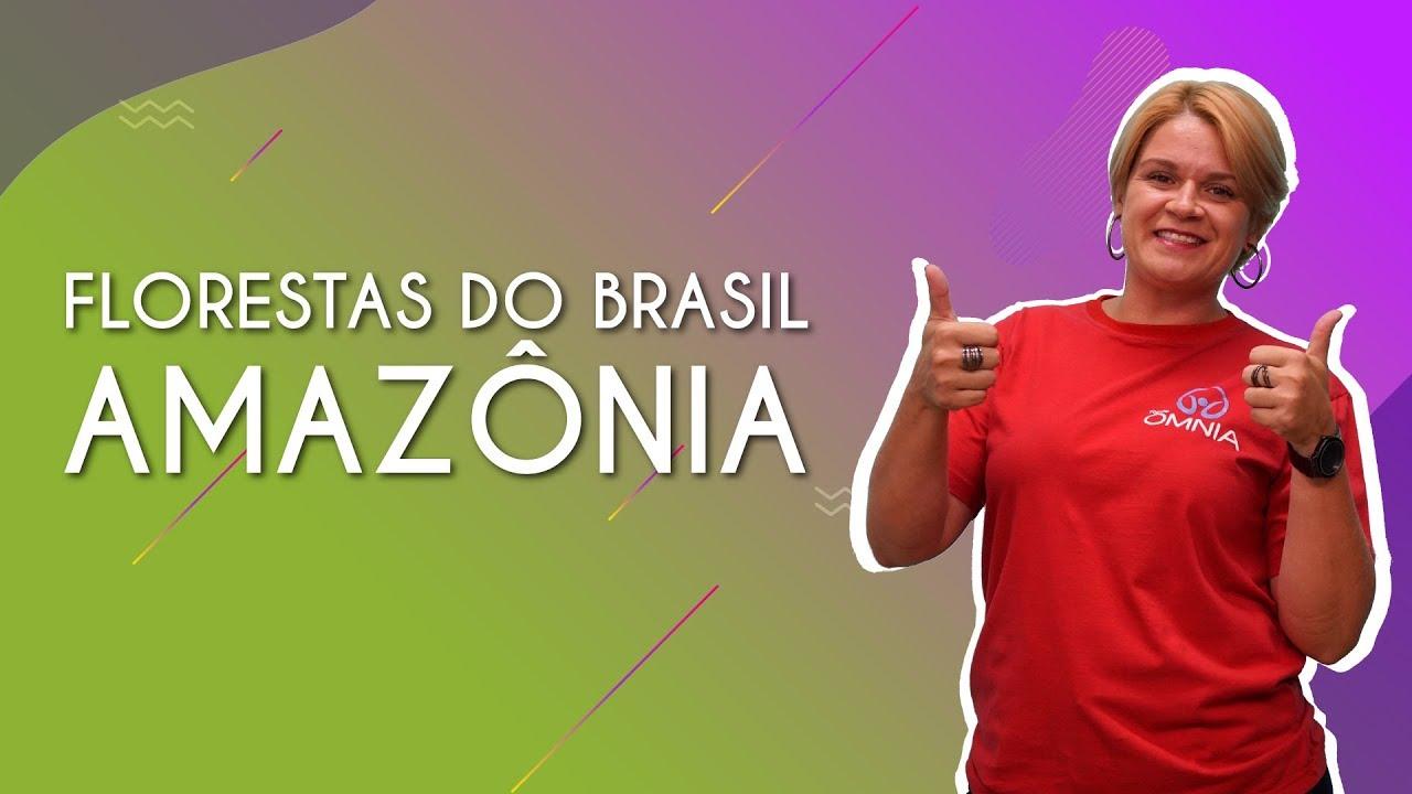Florestas do Brasil: Amazônia