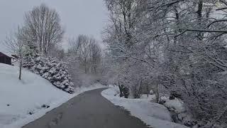 Zadnji januarski sneg