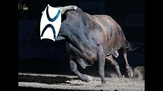 XRP King of Coins: DAMN! The Bulls Got Rowdy Today... Yeee Haw!