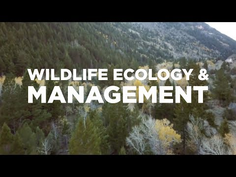 Wildlife Ecology & Management students get a hands-on education