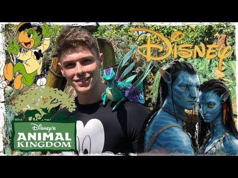 Meu dia na DISNEY parte 2 Peter Toys no Animal Kingdom Pandora Avatar Flight of Passage