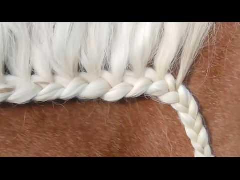 Olej do włosów jedwabisty połysk opinii wilgotne Diane