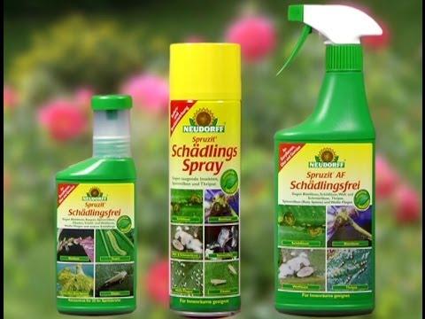 Neudorff Spruzit - Pflanzenschutzmittel zur Bekämpfung verschiedener Schädlinge