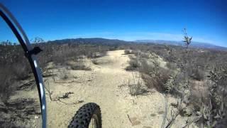 Viper Trail