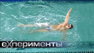 Тихая вода. Водные и подводные виды спорта