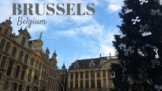 preview picture of video 'Brussels, Belgium (VLOG)'