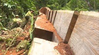 Bắc Cạn khó khăn trong công tác bảo vệ rừng ở Vườn Quốc gia Ba Bể