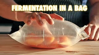 The Easiest Way To Ferment Any Fruit (Lacto-Fermentation)