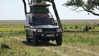A Day on Safari in the Masai Mara