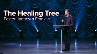 The Healing Tree by Jentezen Franklin
