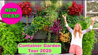 Container Garden Tour 2020 | Favorite Combos & Varieties Of The Year | Beautiful, Unique & NEW IDEAS